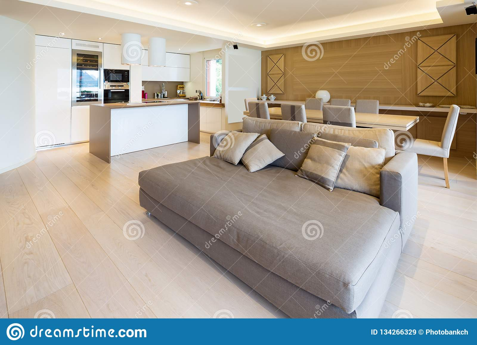 Spacious Living Room In Modern Apartment With Parquet And ...