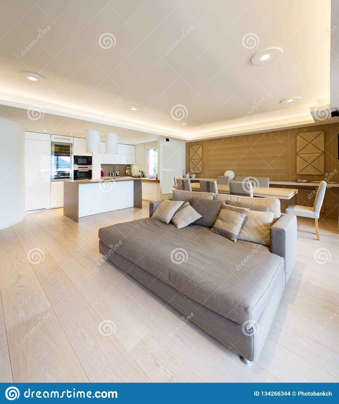Spacious Living Room In Modern Apartment With Parquet And Elegant ...