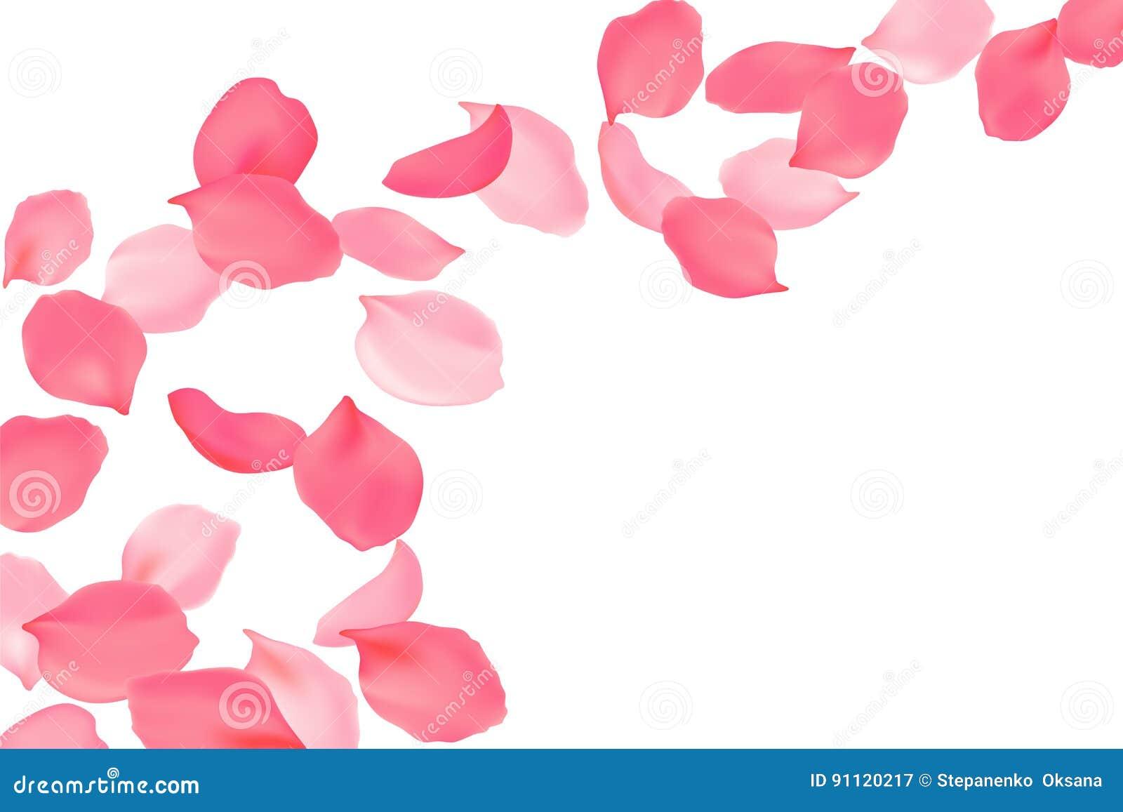 Spada różanych płatków menchii jaskrawy okwitnięcie Sakura latania czereśniowi kwiaty 3d realistyczny projekt również zwrócić cor