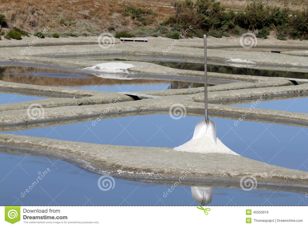 Spade In The Salt Marshes Stock Photo - Image: 45550919