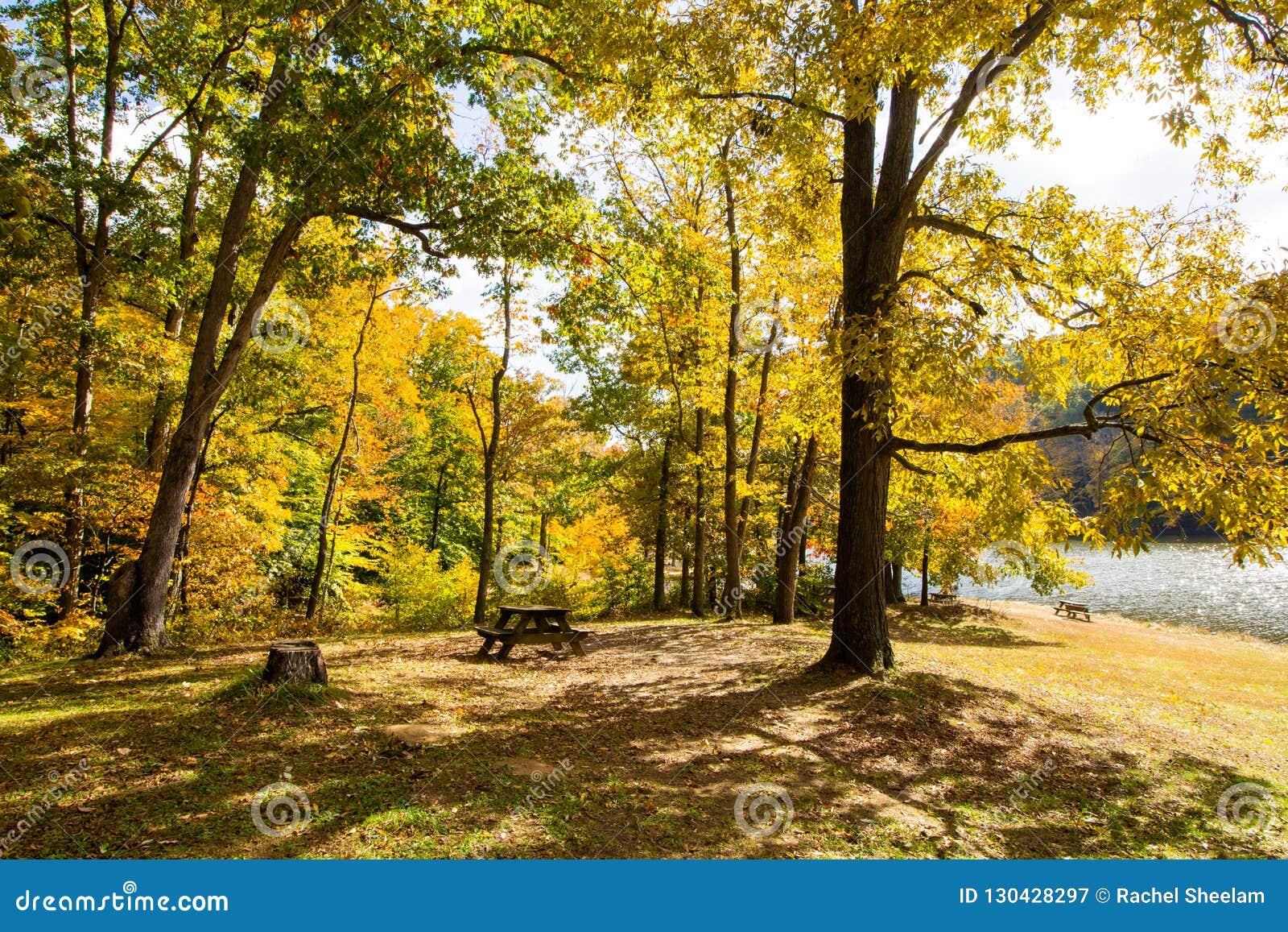Spadek dalej Oczkuje jezioro, Brown okręg administracyjny stanu park, Indiana