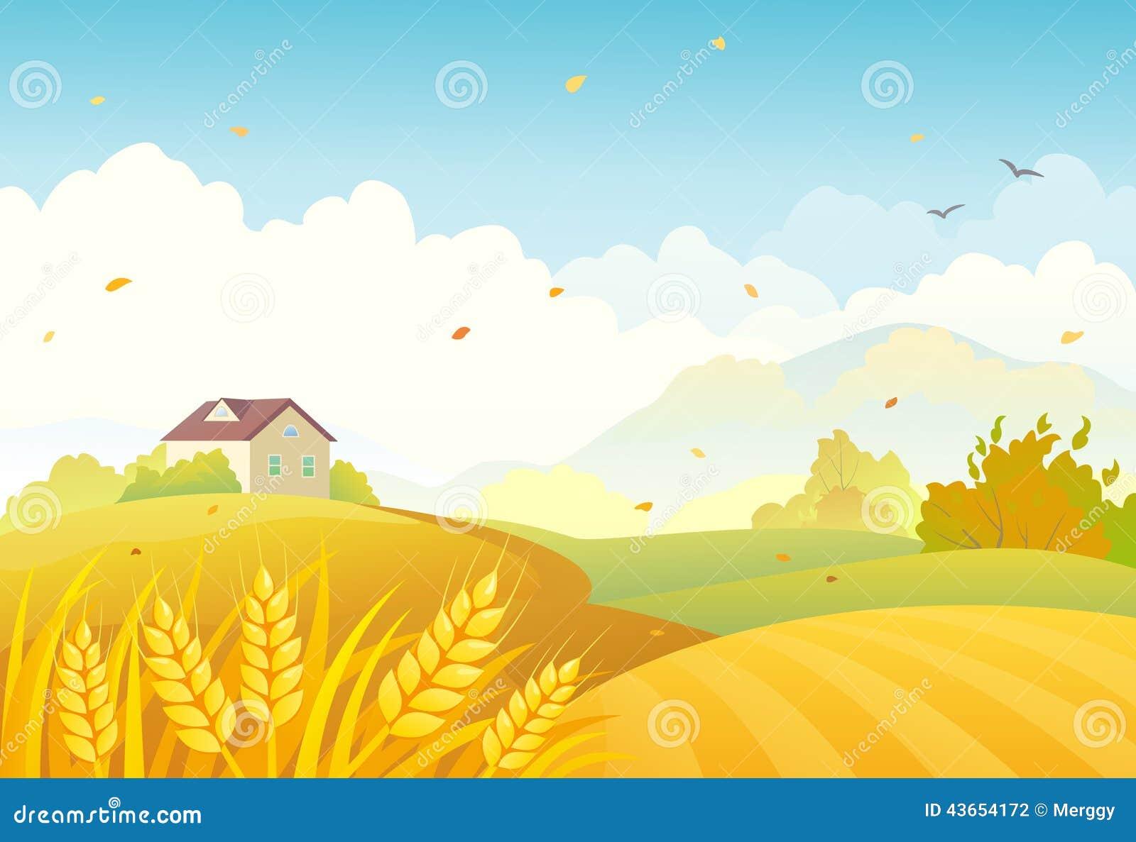Spadków pola