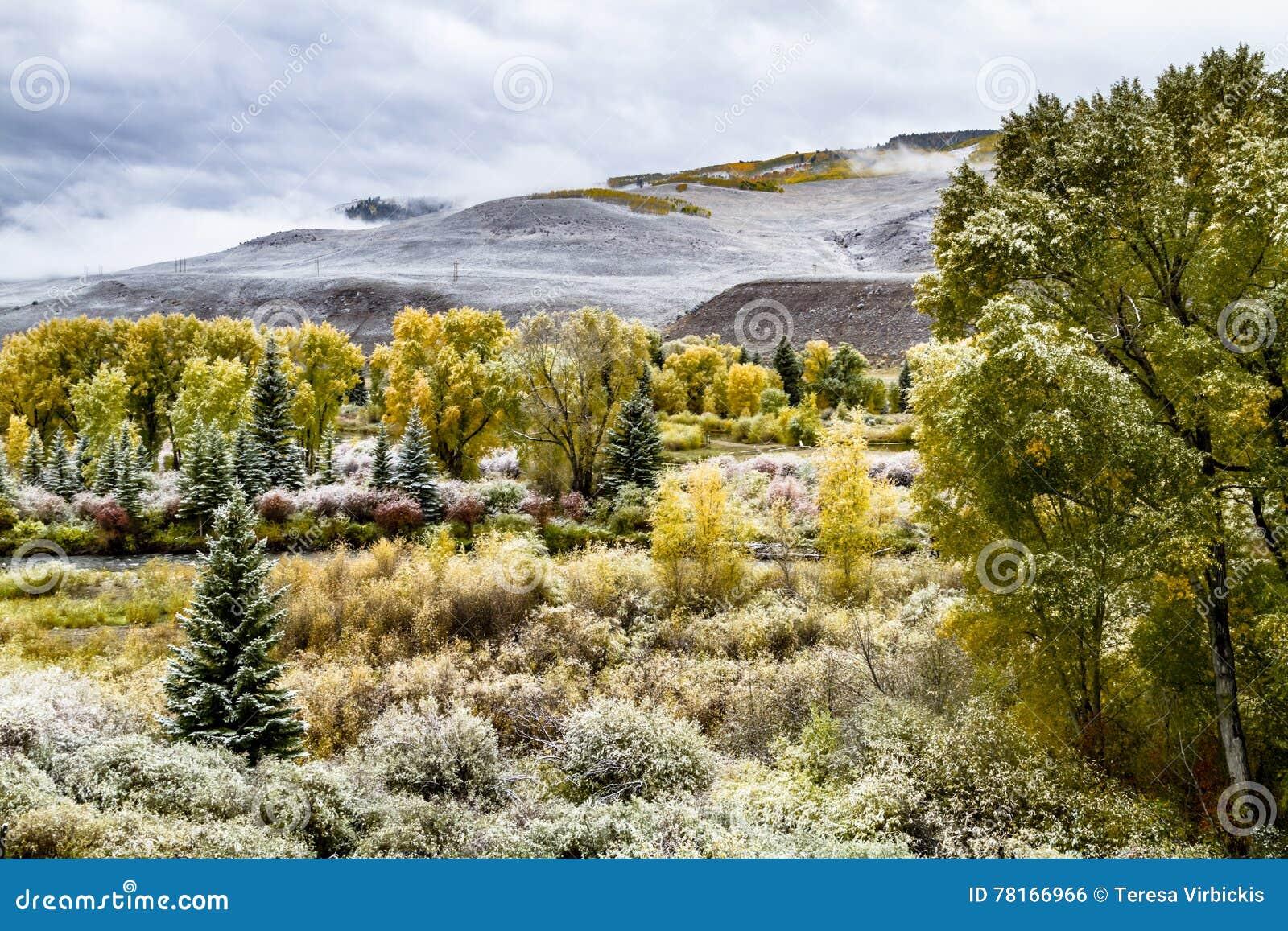 Spadku śnieg w Kolorado i kolor