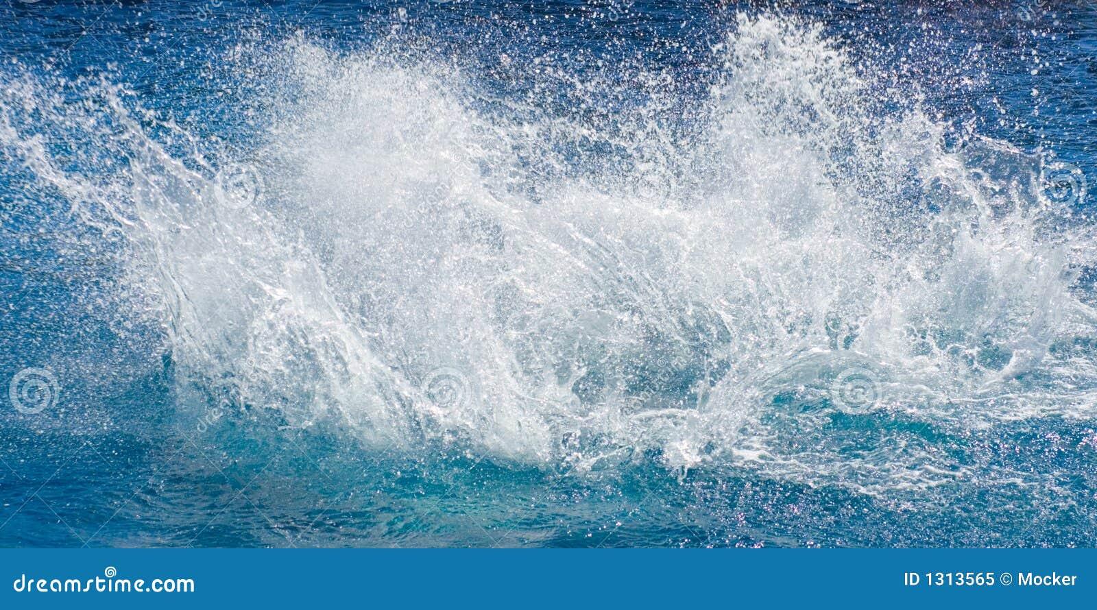 Spalsh mórz oceanu