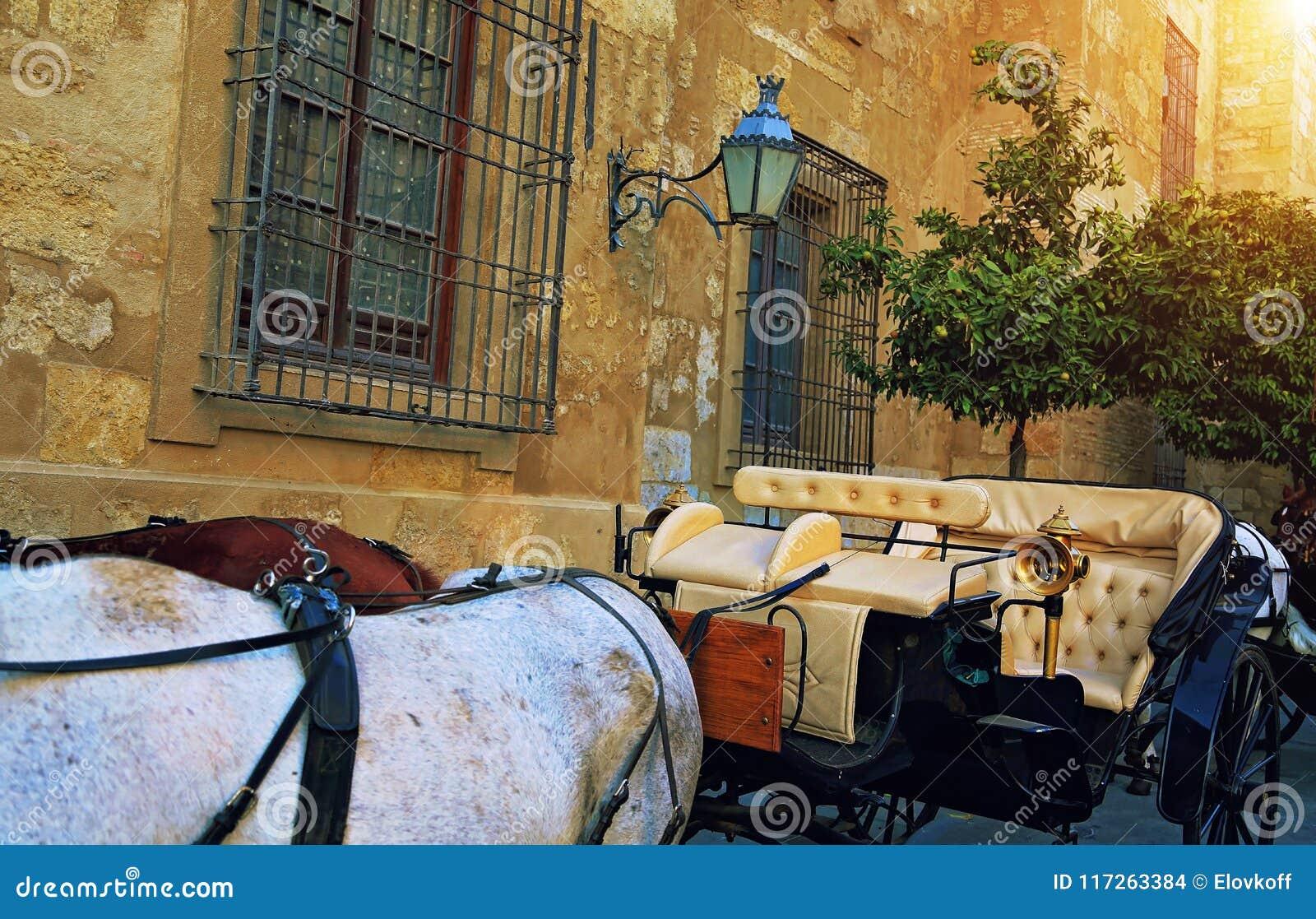 Spanien väntande på turister för hästvagn near den forntida domkyrkan