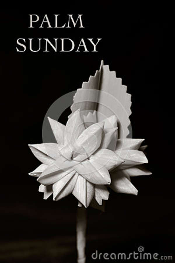 the text palm sunday and a small traditional spanish braided palm to be blessed on this day