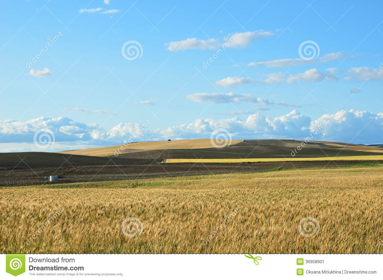 Spanish Country Landscape In Spring Stock Image Image