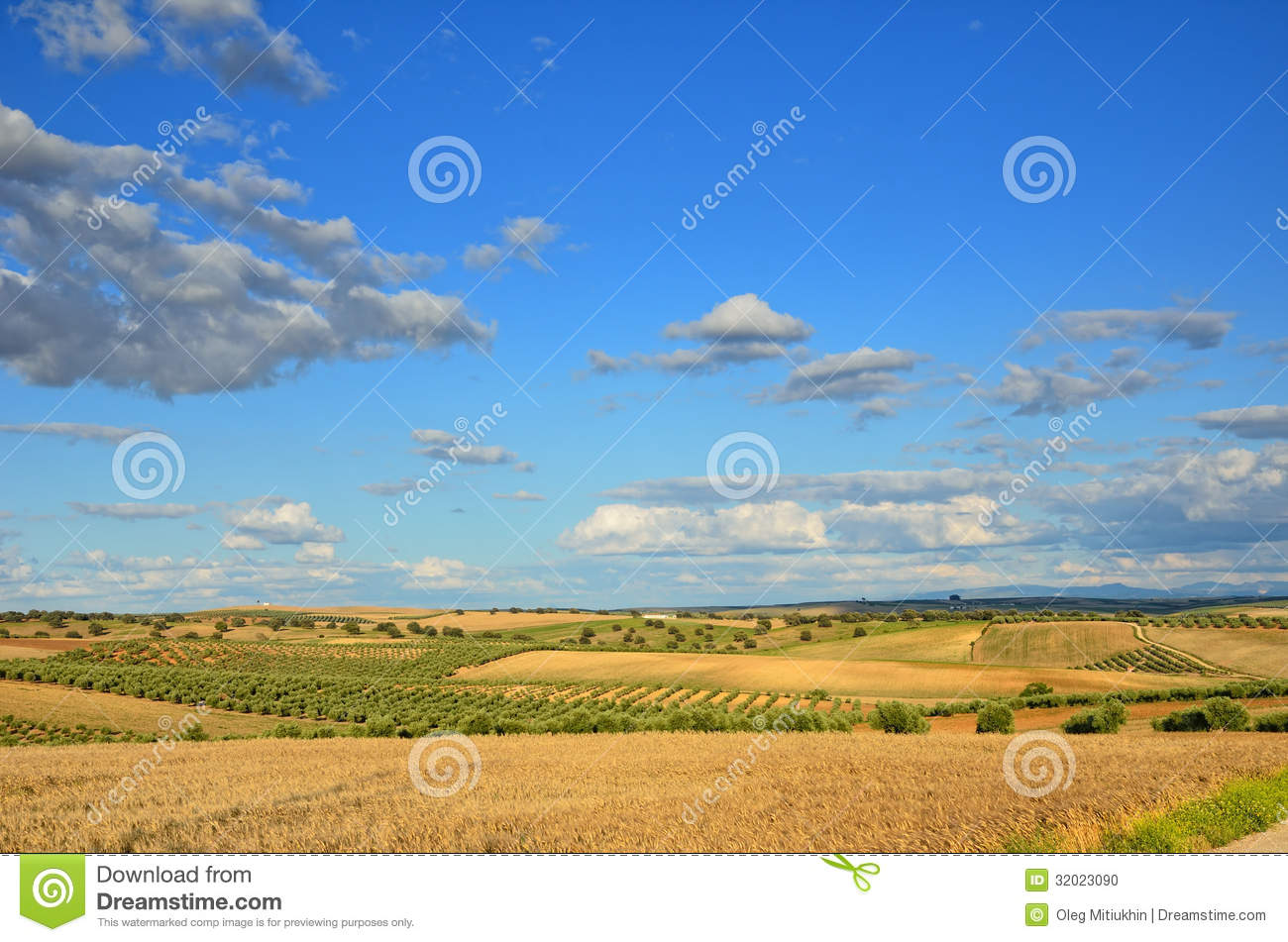 Spanish Country Landscape In Spring Stock Photo Image