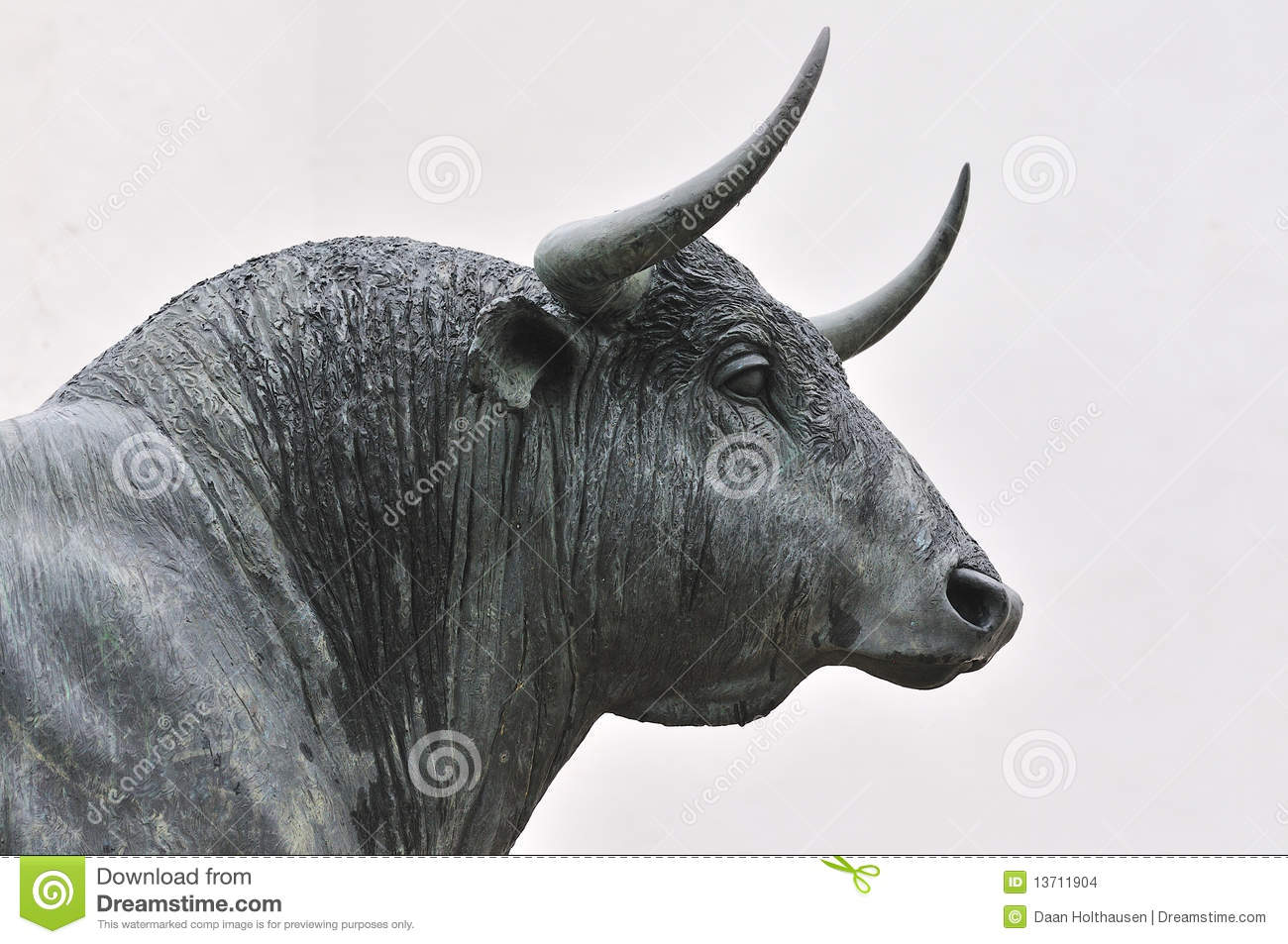 how to say bull in spanish