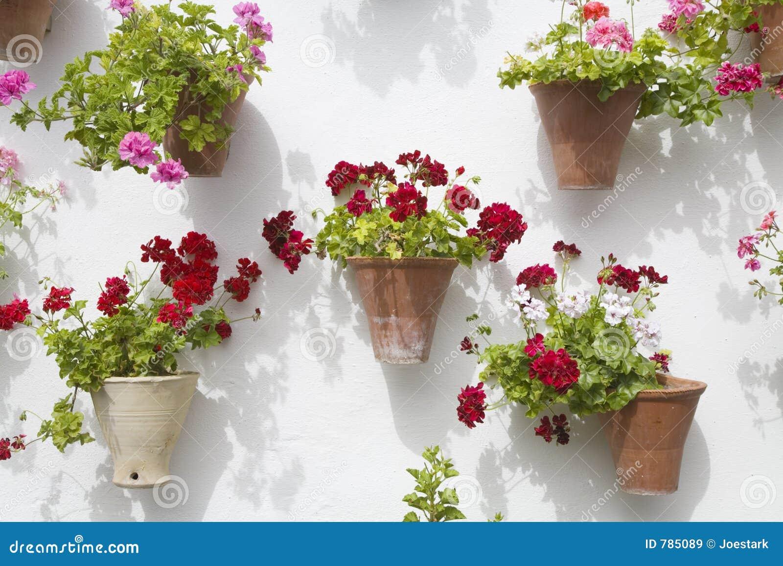 Spanish Flowers Royalty Free Stock Image