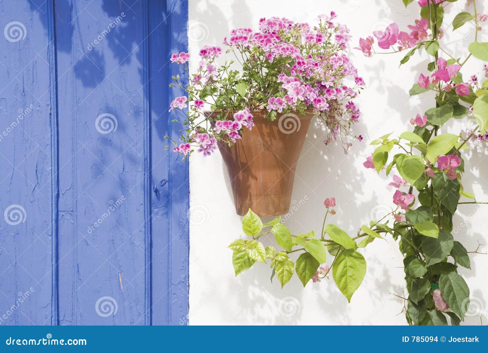 Spanish Flowers Stock Image