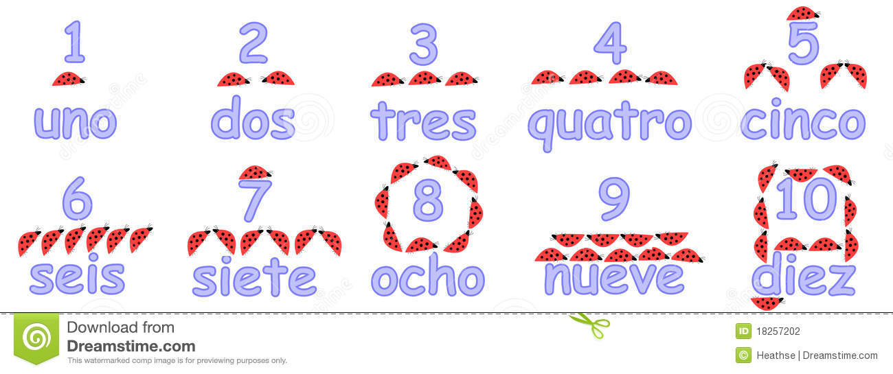Educational numbers in spanish with ladybirds (ladybugs) for young ...
