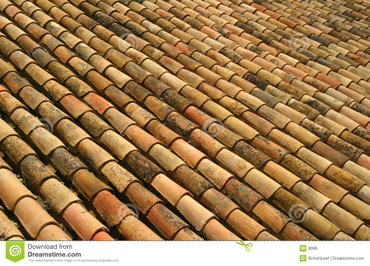 Spanish Roof Tiles Royalty Free Stock Photos Image 8098