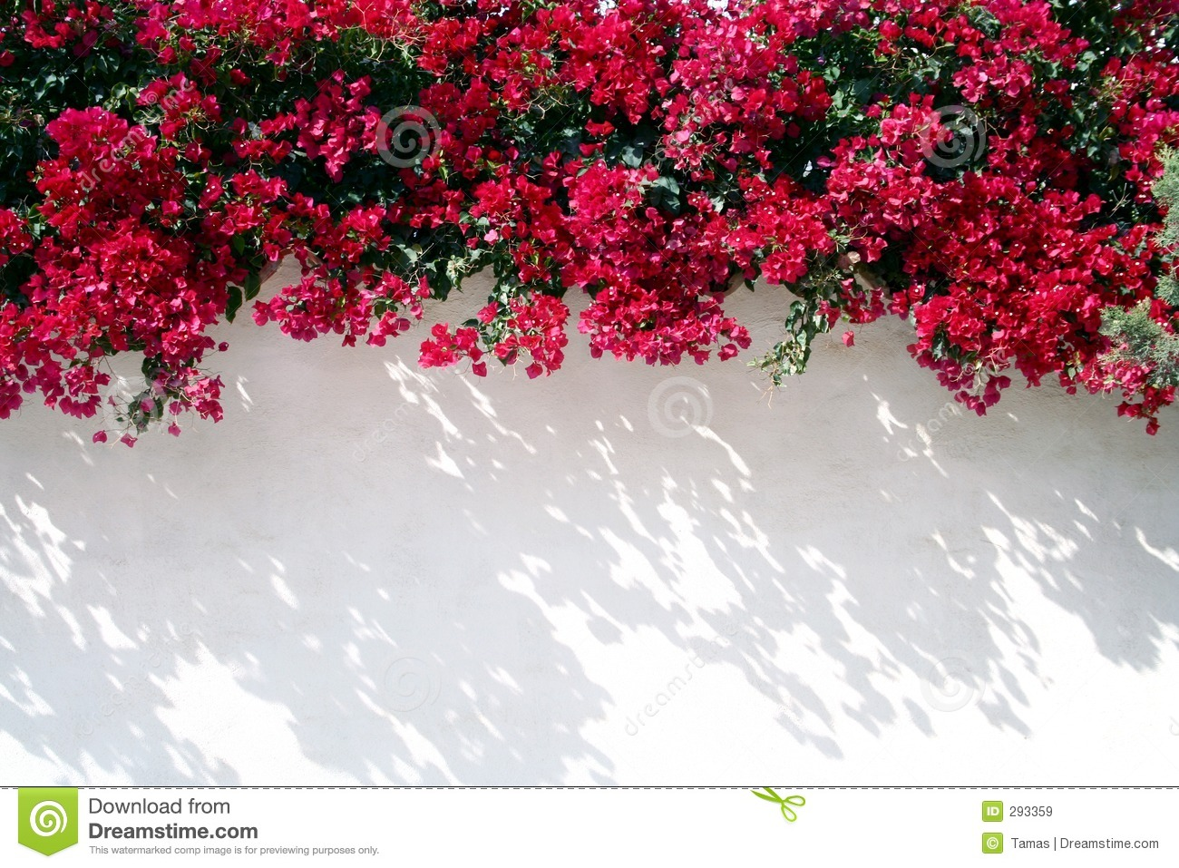 Spanish Wall With Flowers Royalty Free Stock Image