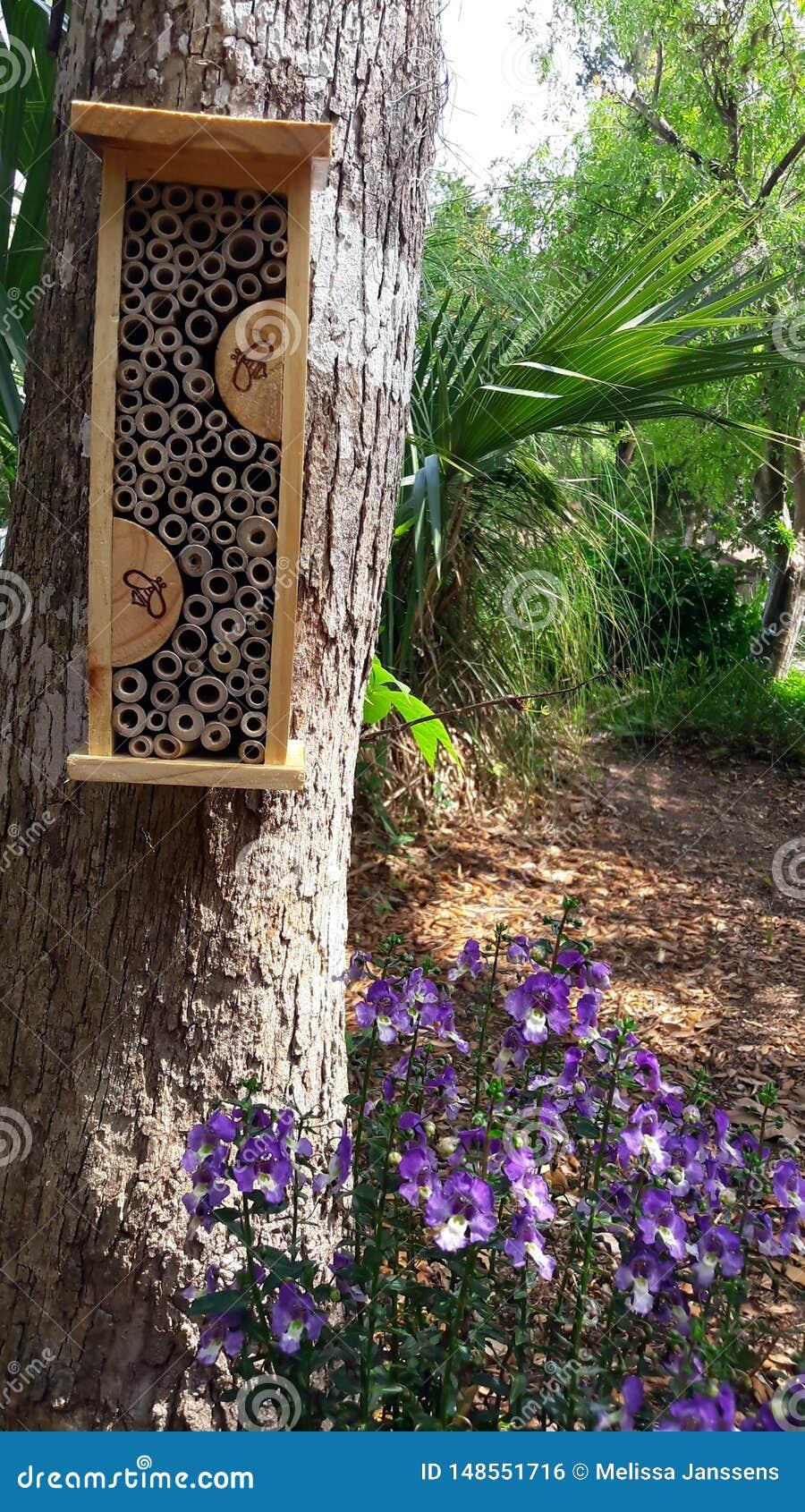 Sparen de bijen Het planten van bloemen voor van het bijenbestuiving en huis habitat voor winterslaap