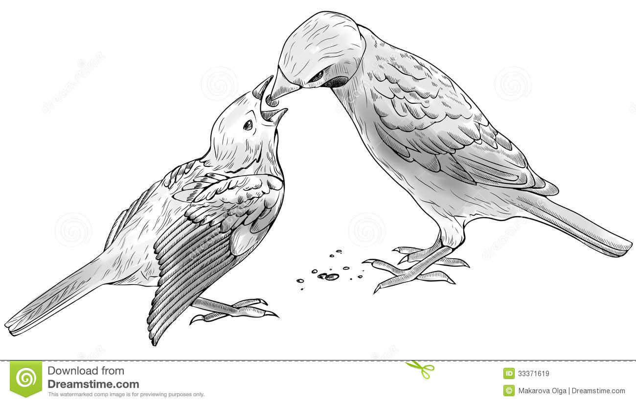 Sparrow feeds baby bird stock illustration. Illustration ...