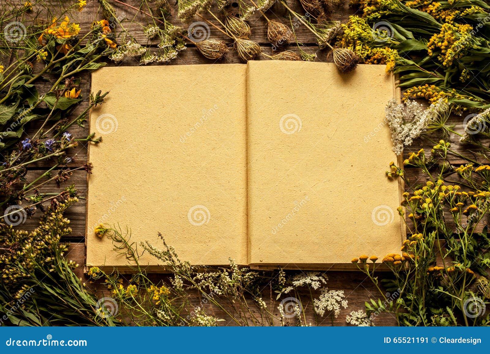 Spatie geopend boek met rond bloemen en installaties van de de recente zomer de de natuurlijke weide