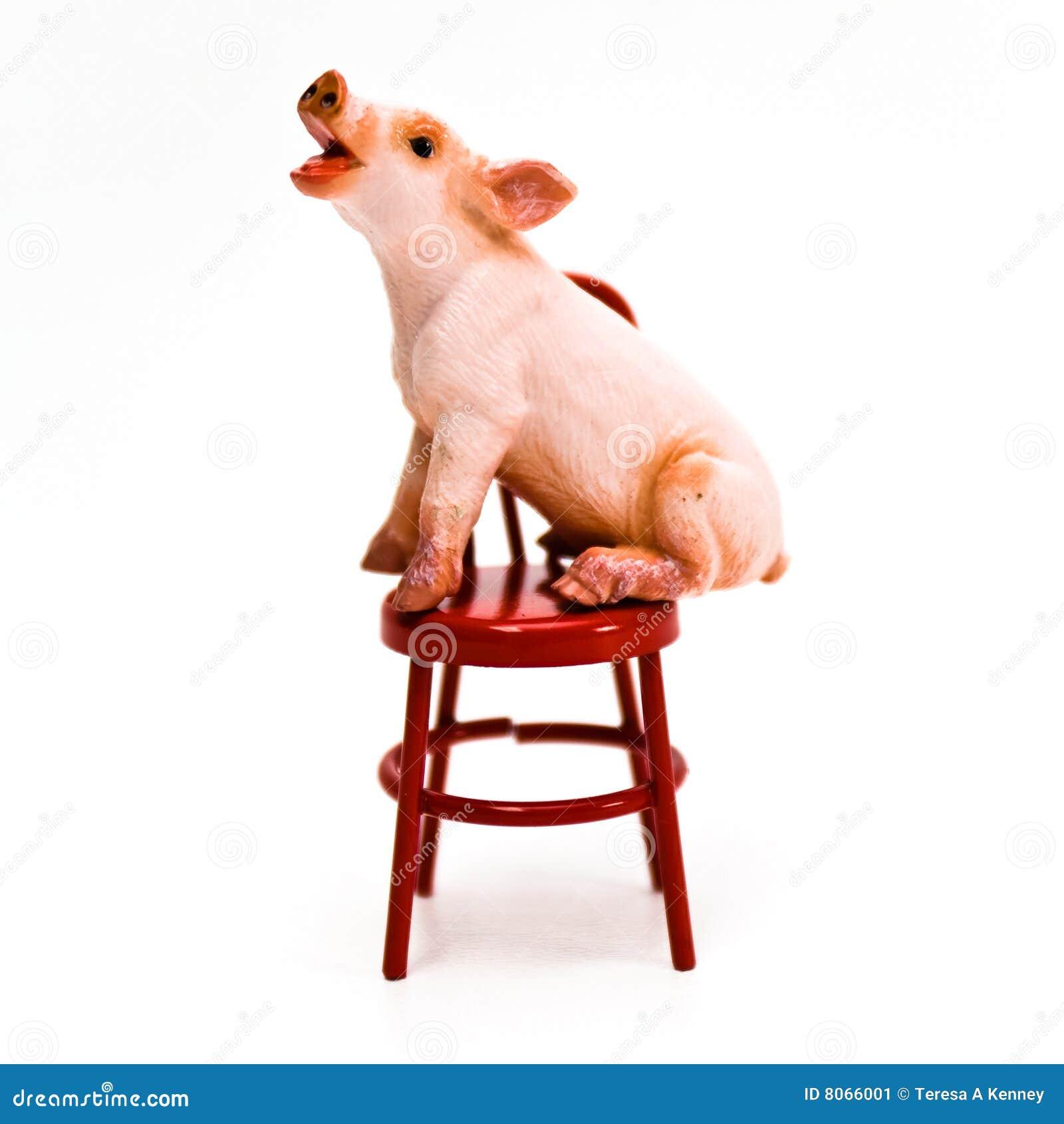 Speak Up ! Pig on Chair