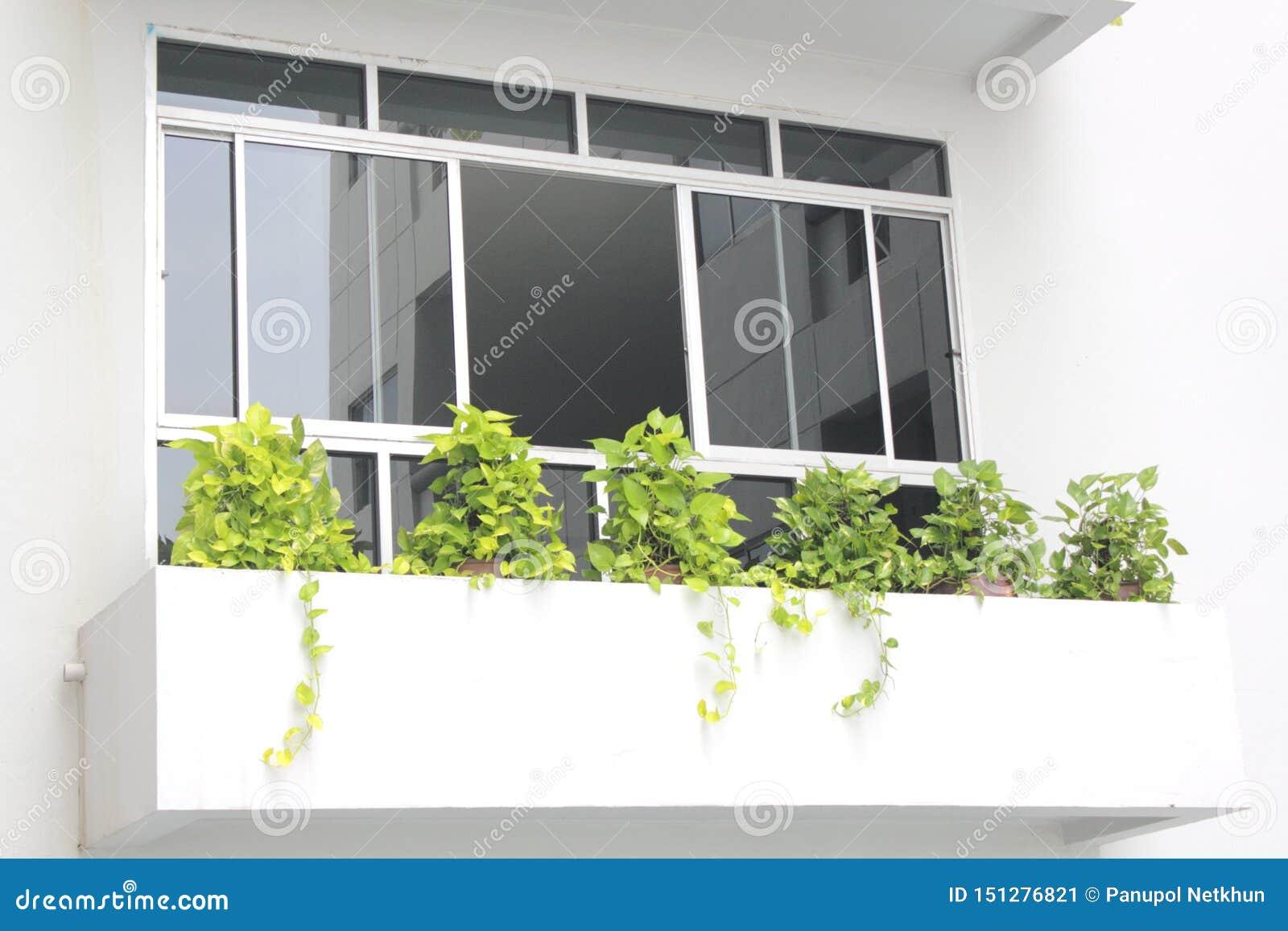 Specchio nero sulla casa della finestra