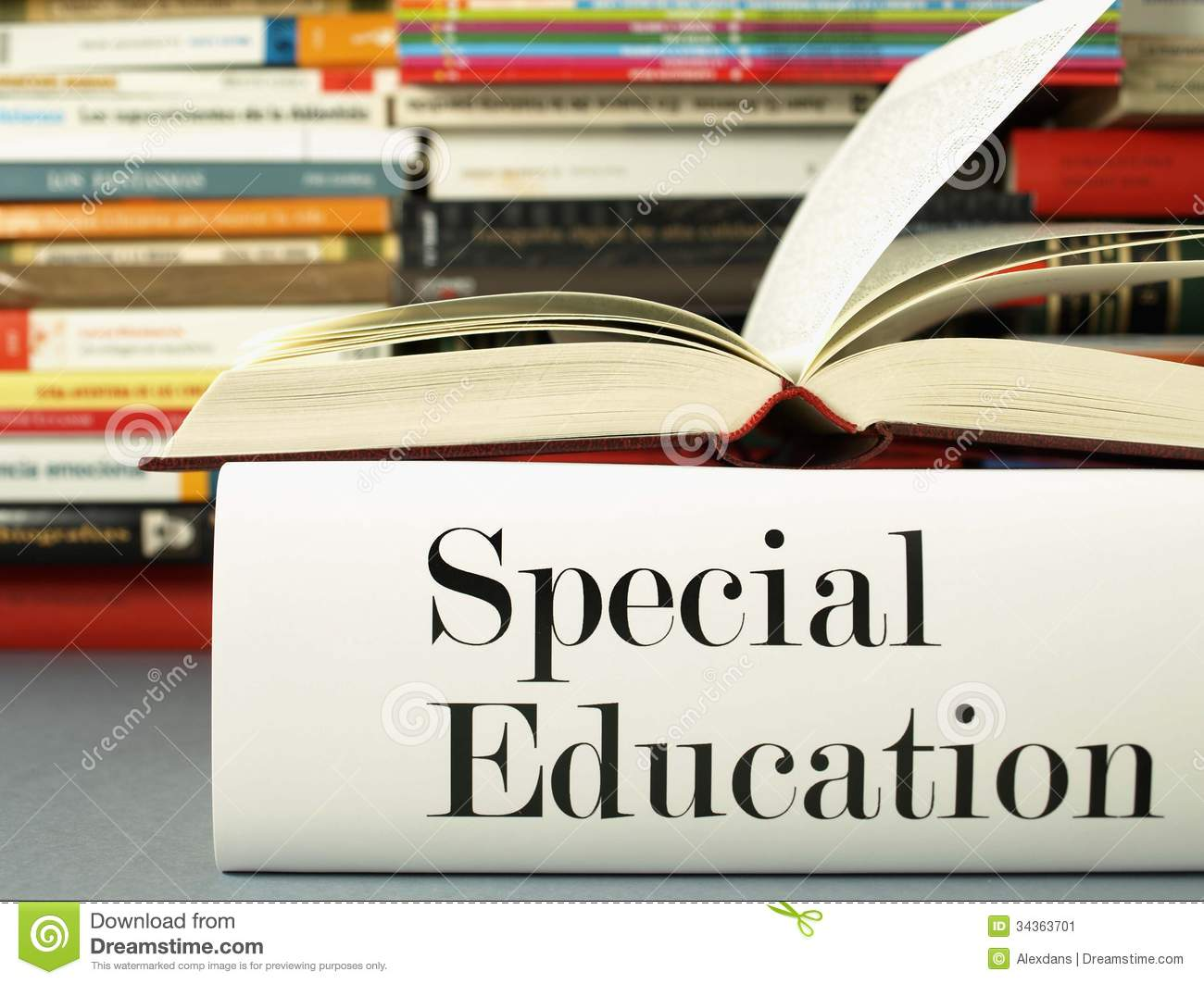 essays on special educational needs