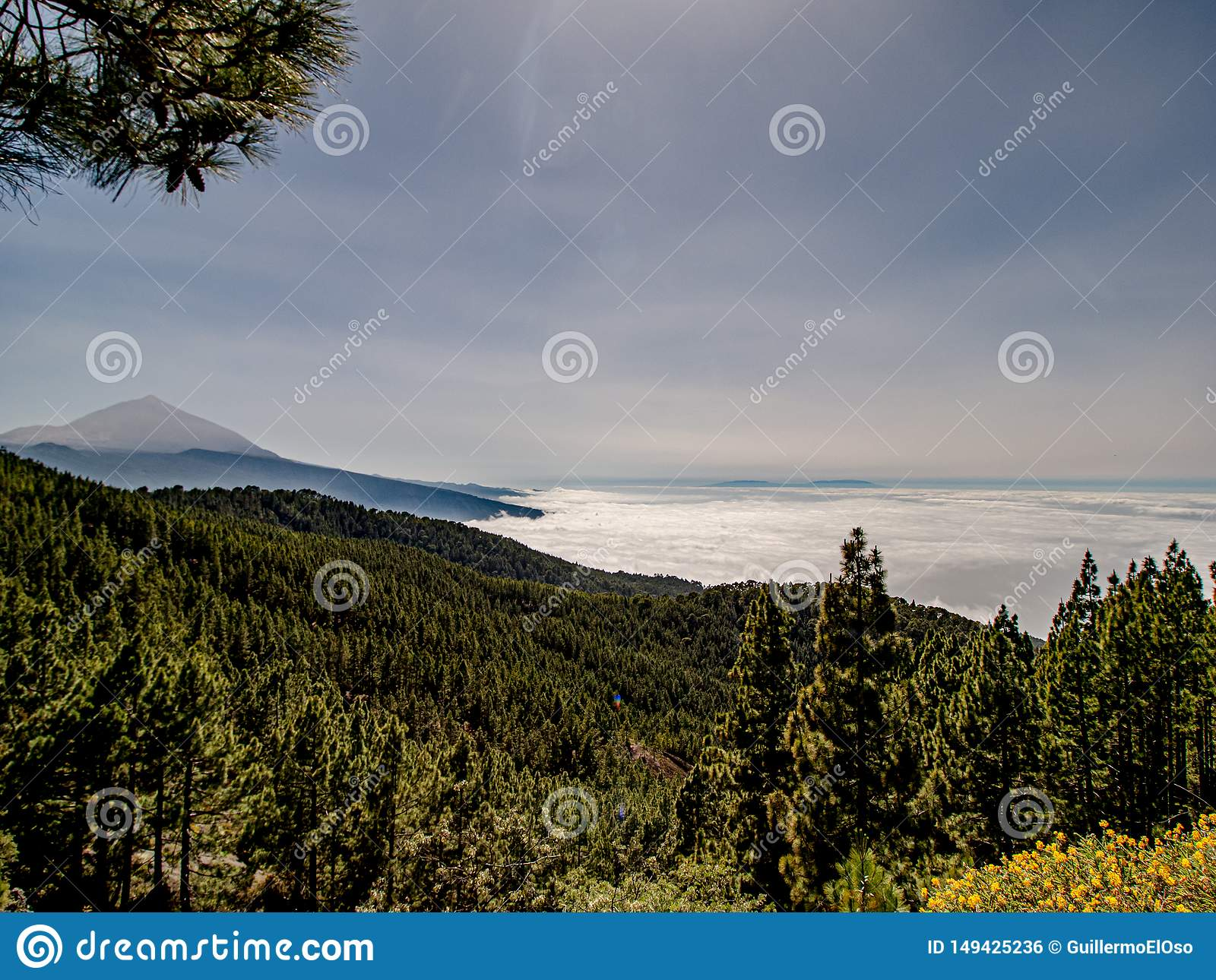 Spectacular view over the clouds to the mountain