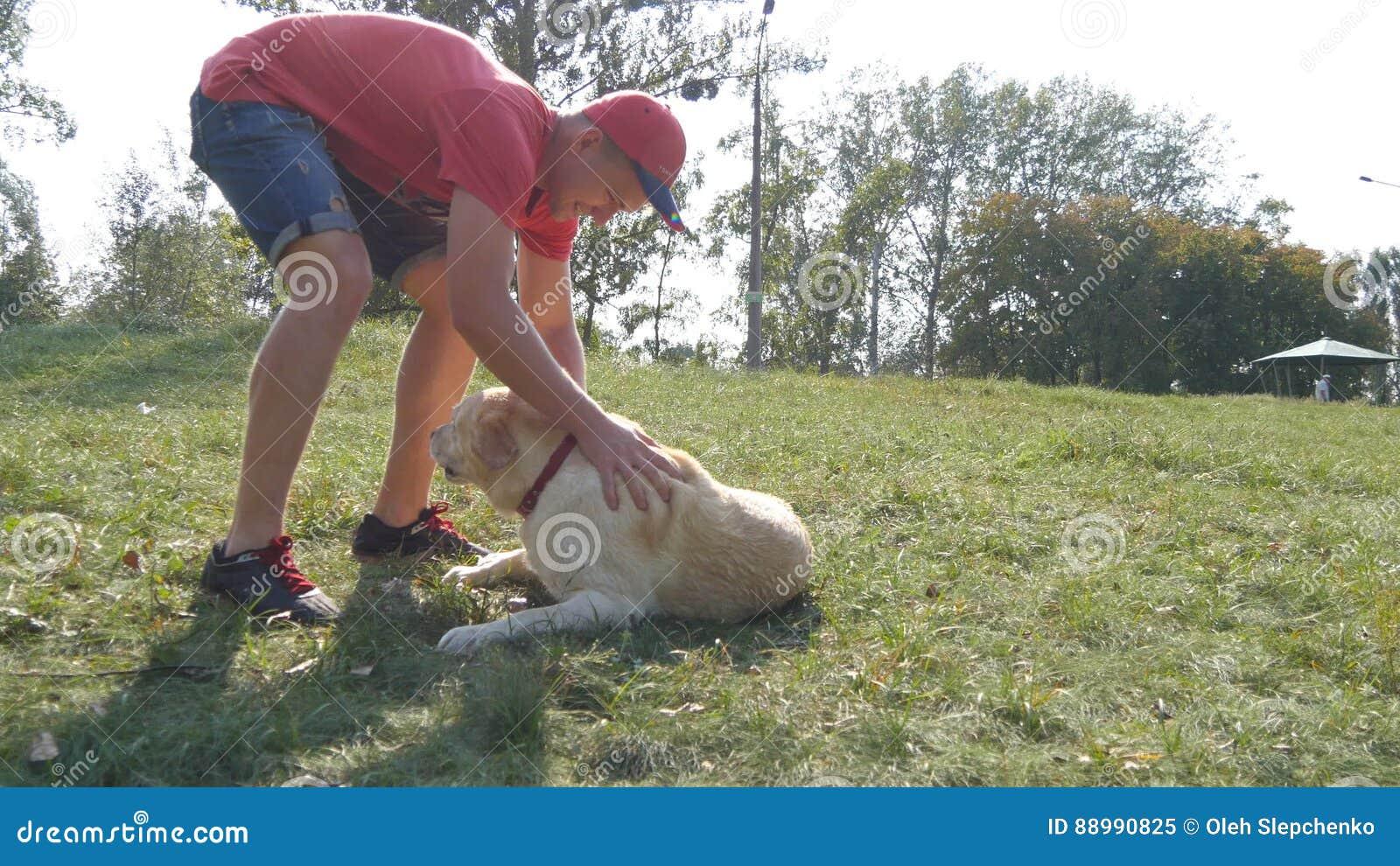 Spela för ung man som och för hund är utomhus- på naturen Labrador eller golden retriever och hans manliga ägare spenderar tid ti