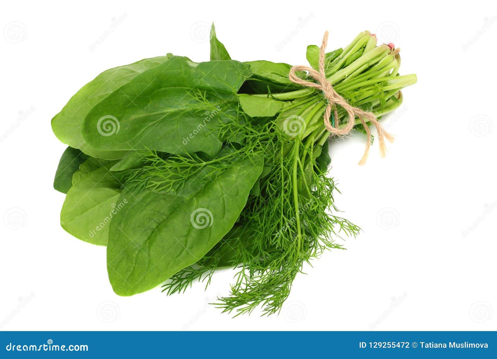 Spenatsidaisolat på vit bakgrund sund mat