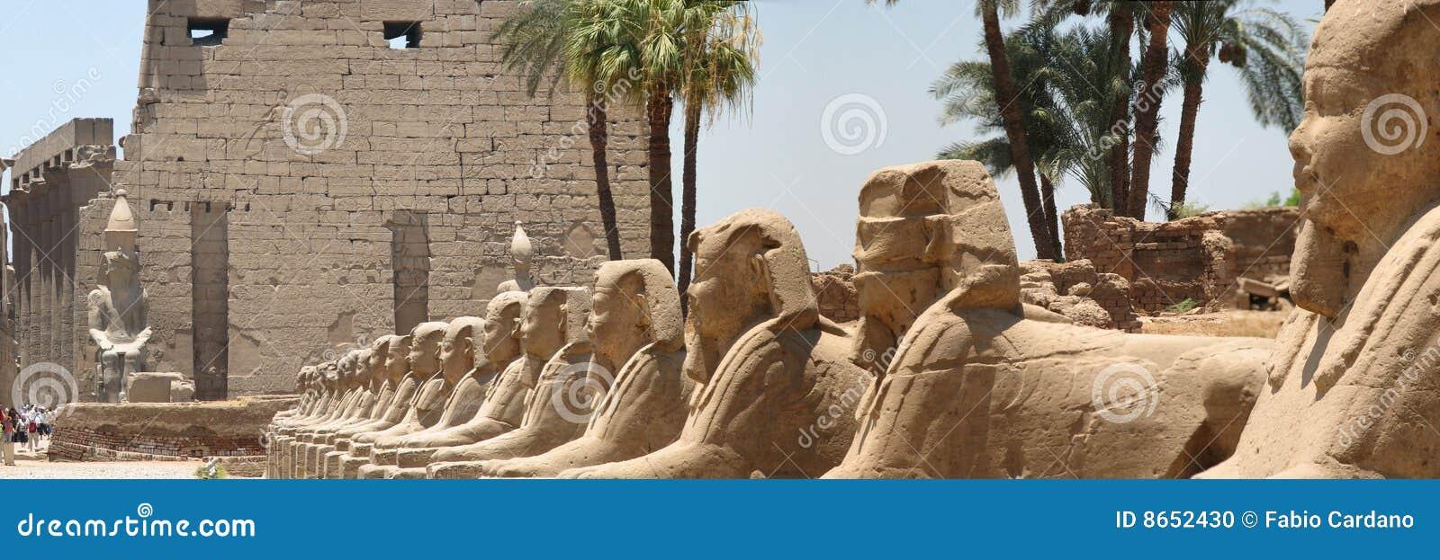 Sphinx de couloir