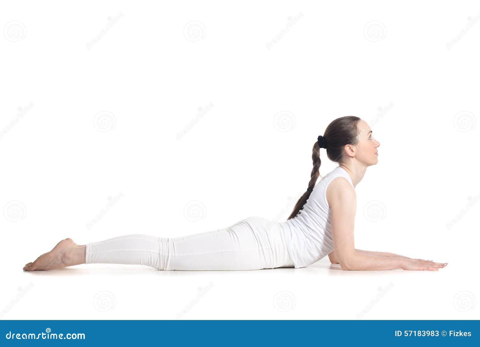 Sphinx Yoga Pose Stock Image Of Ashtanga Exercise