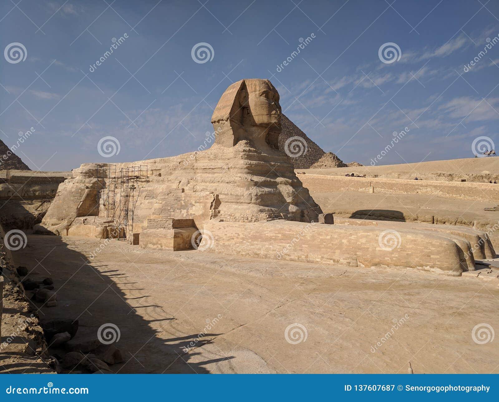 Sphinxs с пирамидой на заднем плане