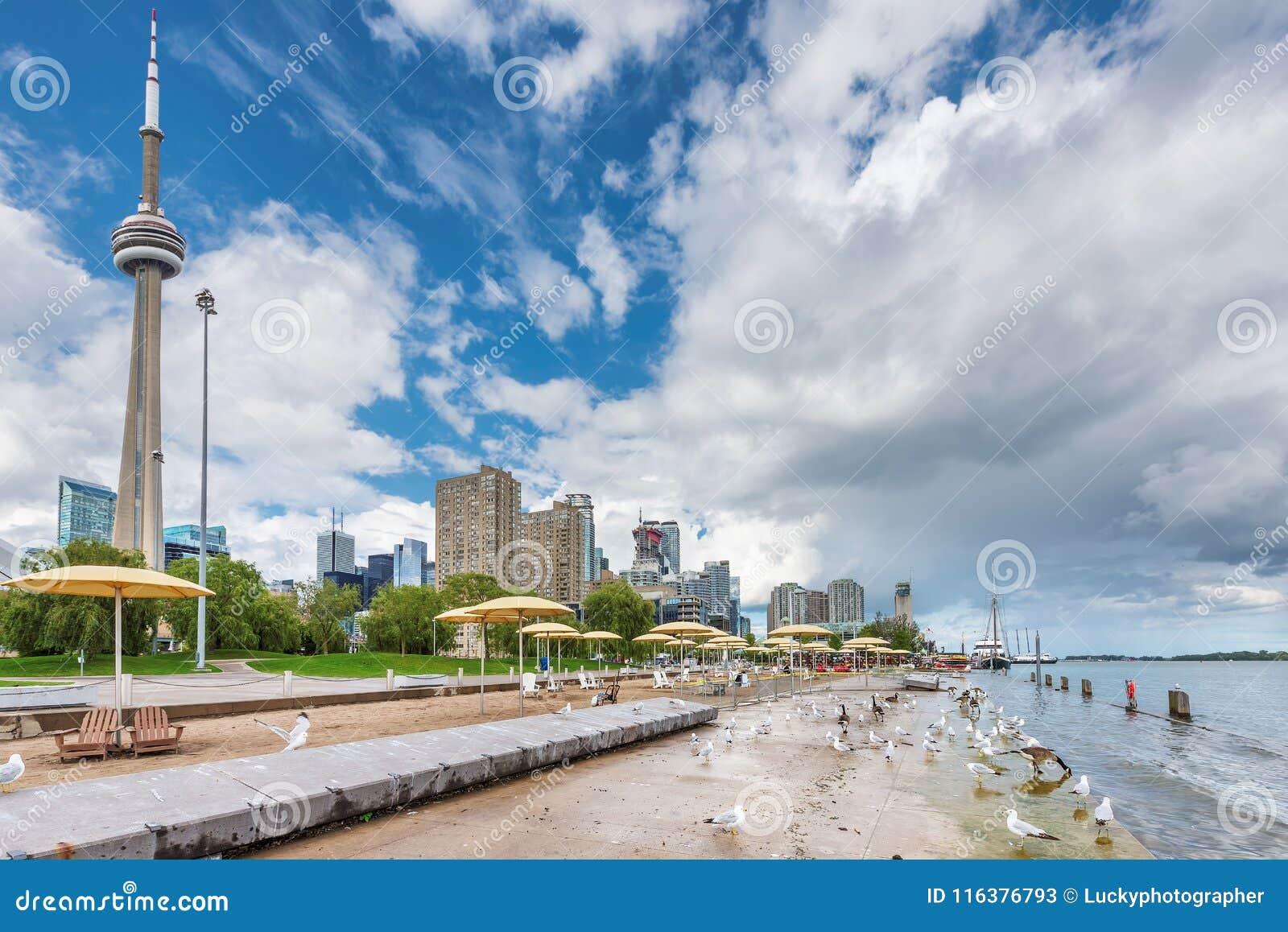 Spiaggia al giorno di estate - Toronto, Ontario, Canada di Toronto