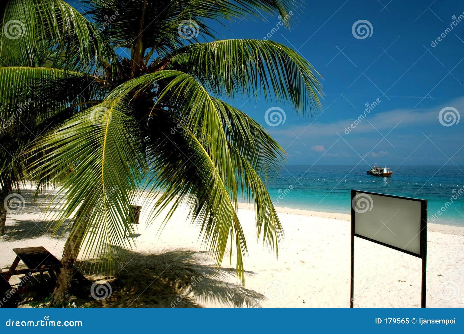 Spiaggia con l insegna in bianco