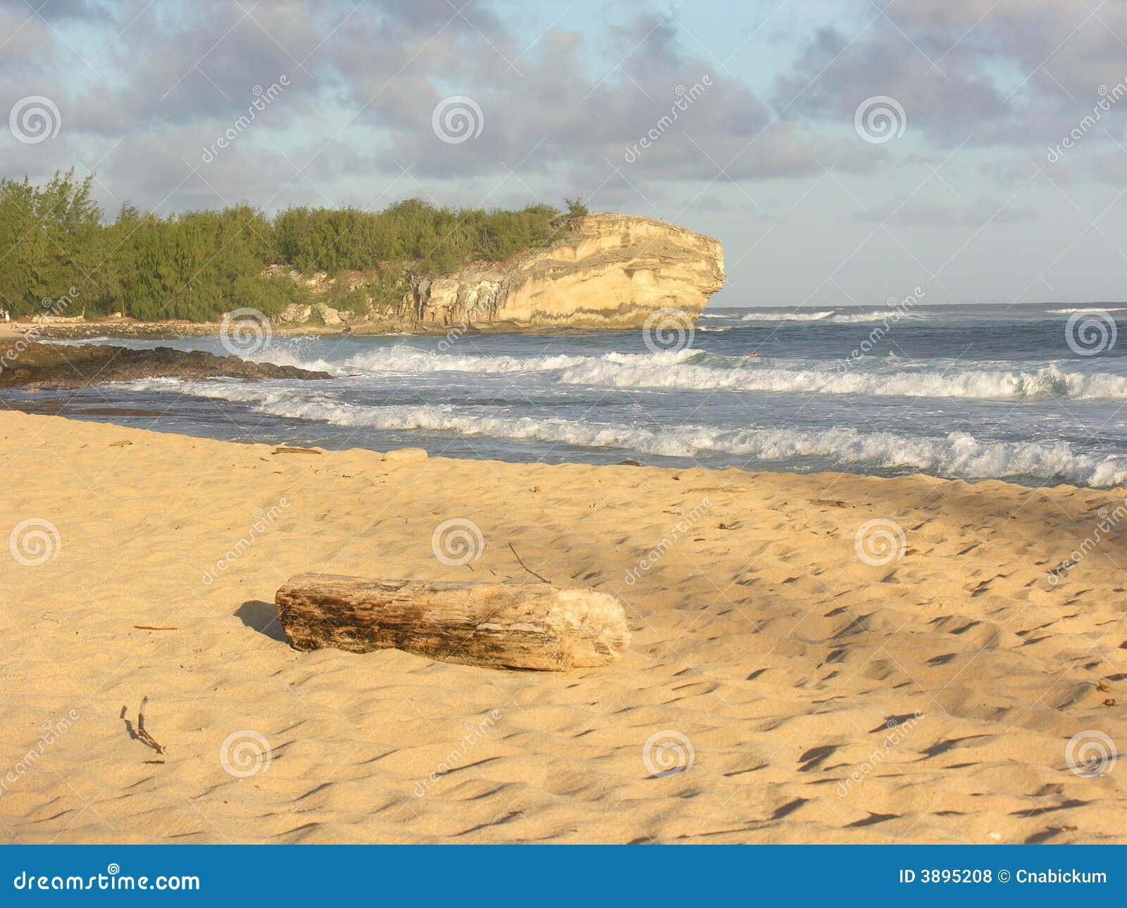 Spiaggia del naufragio