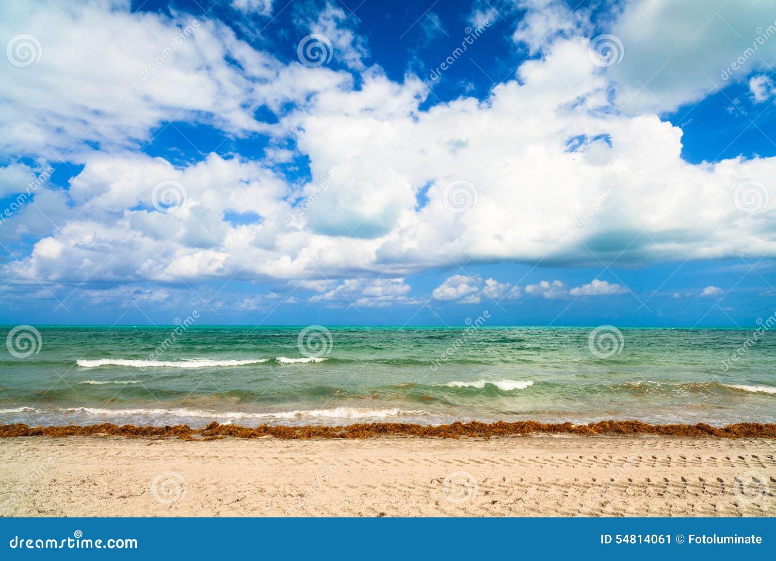 Spiaggia del parco di Crandon