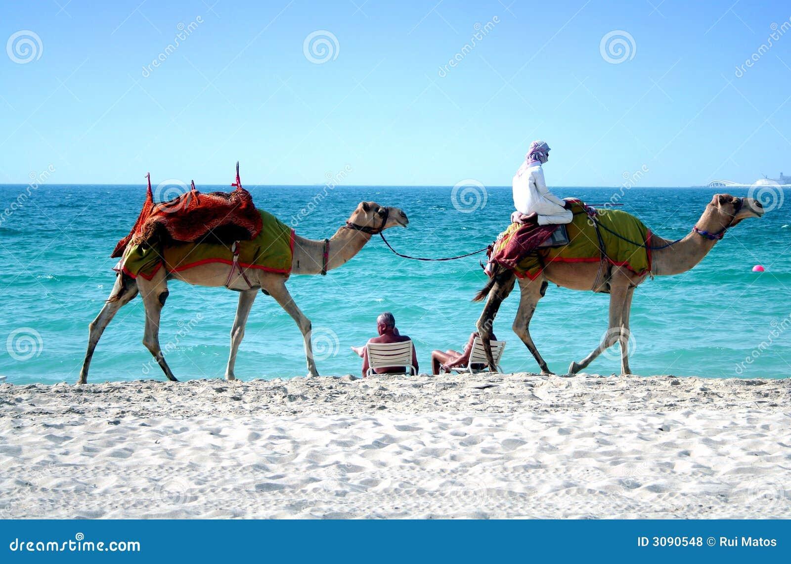 Spiaggia della Doubai