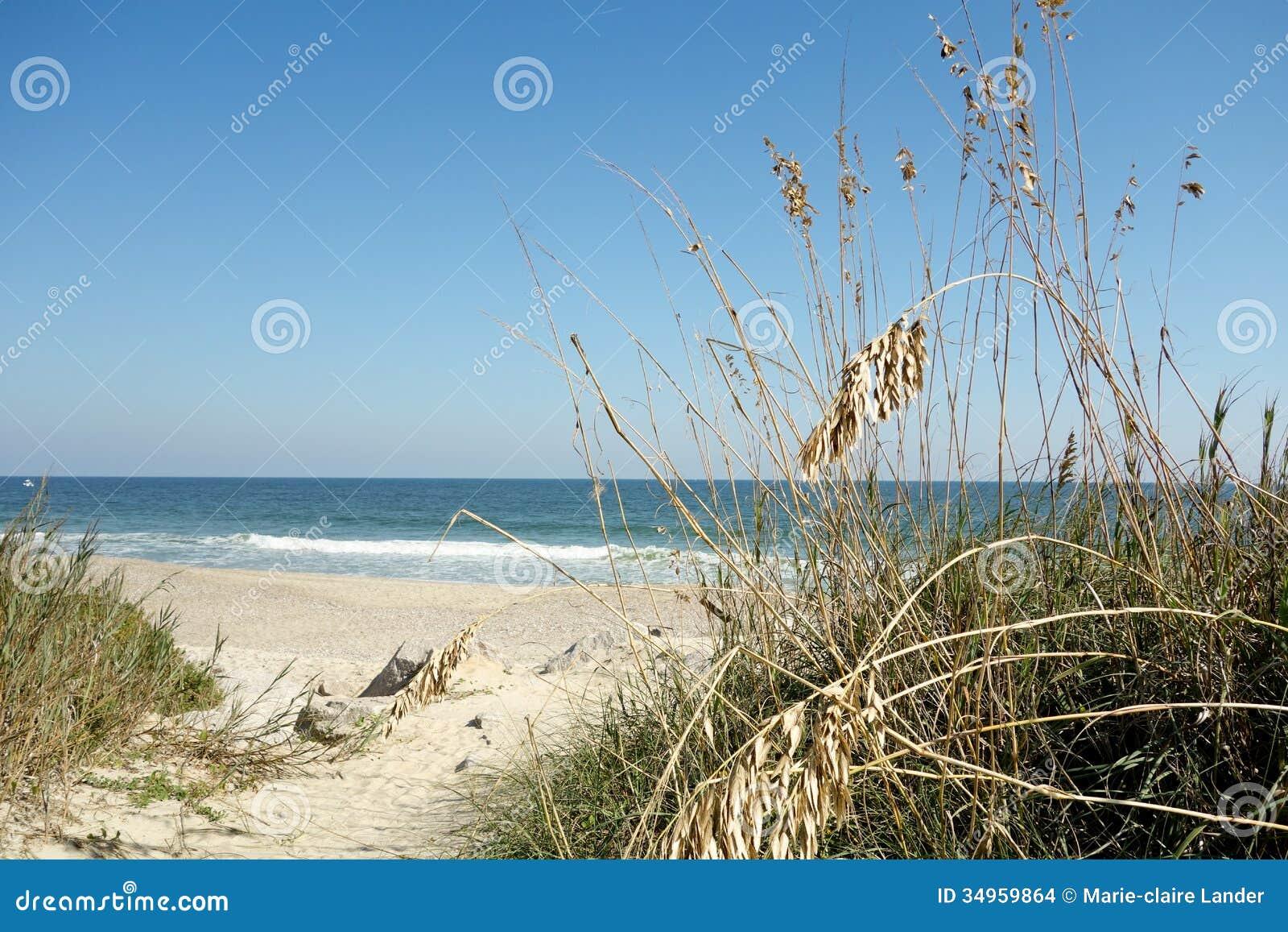 Spiaggia della nord carolina con la priorit alta dell for Piani domestici della carolina costiera