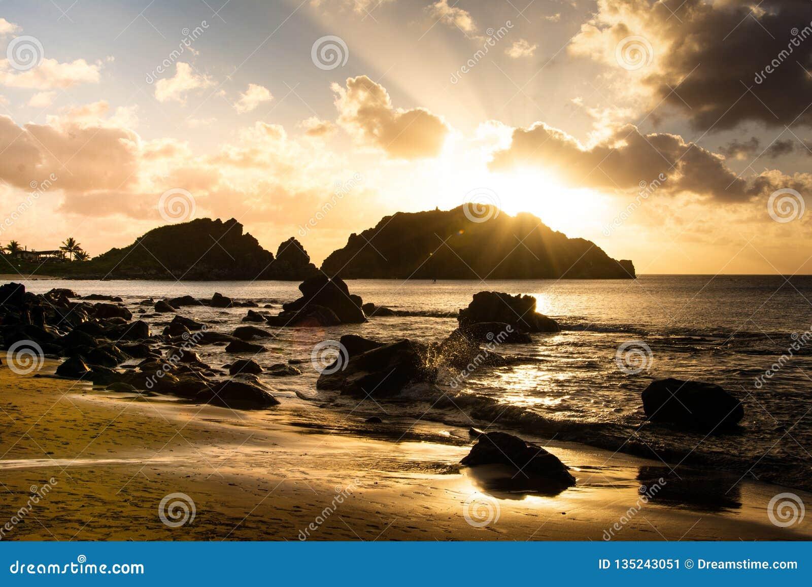 Spiaggia di cachorro di tramonto
