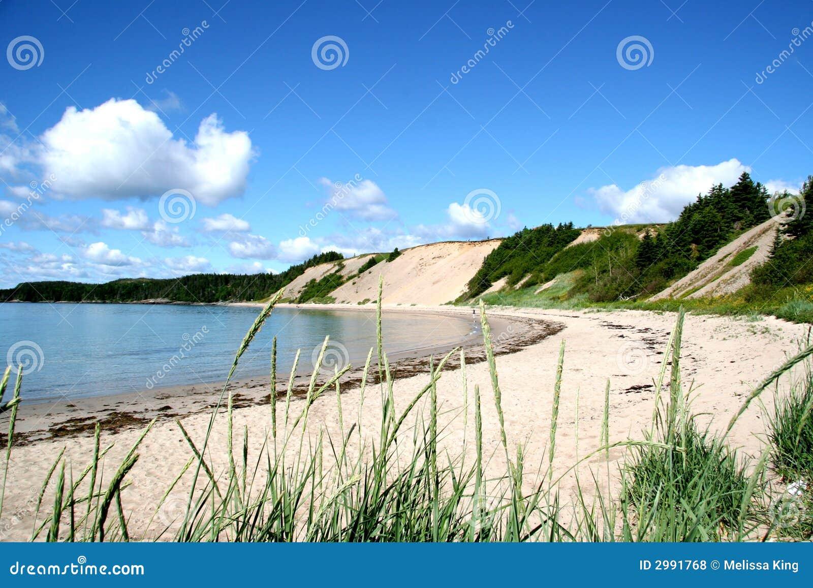 Spiaggia di Sandy in Newfoundl rurale