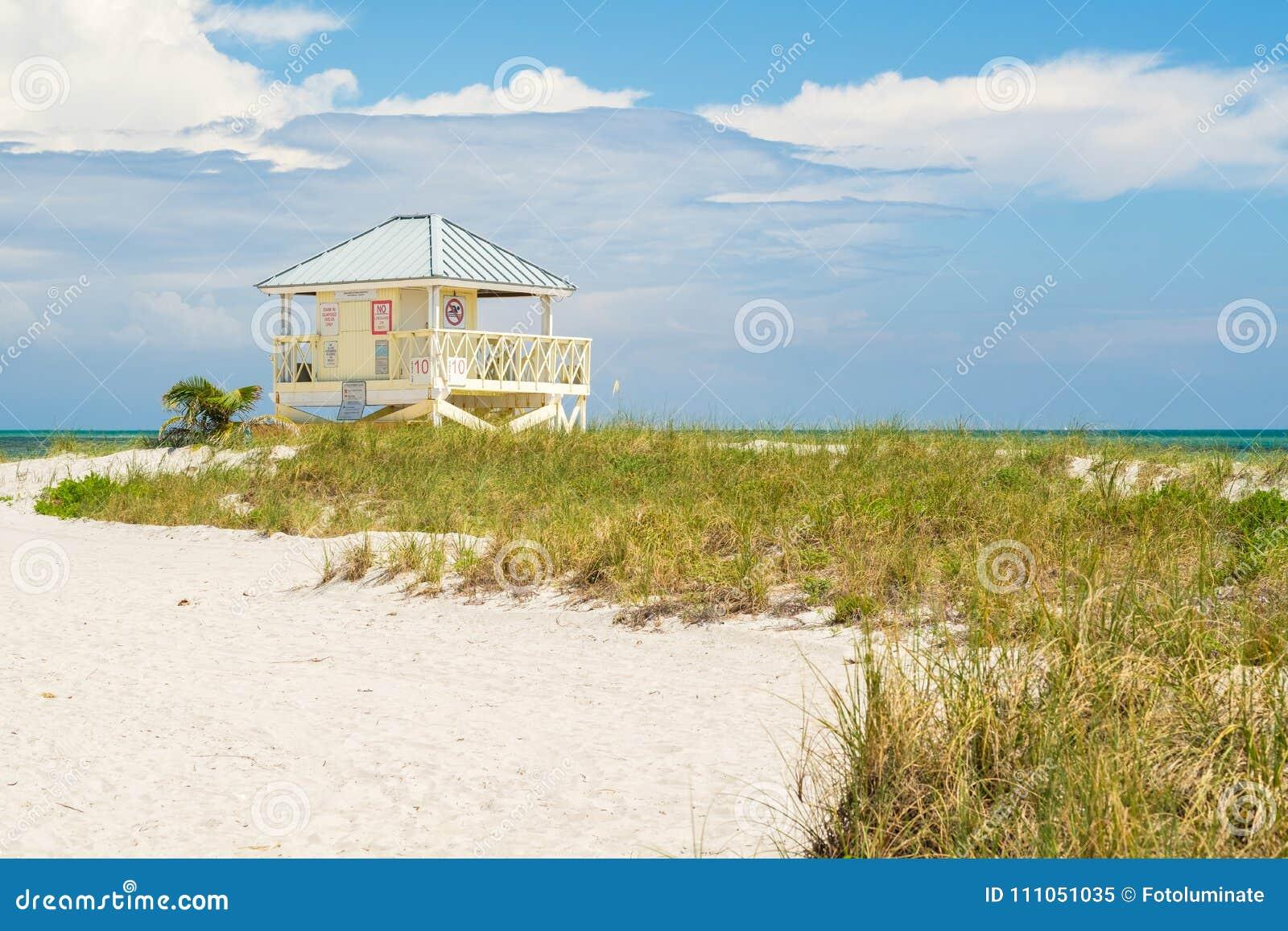 Spiaggia Miami della sosta di Crandon