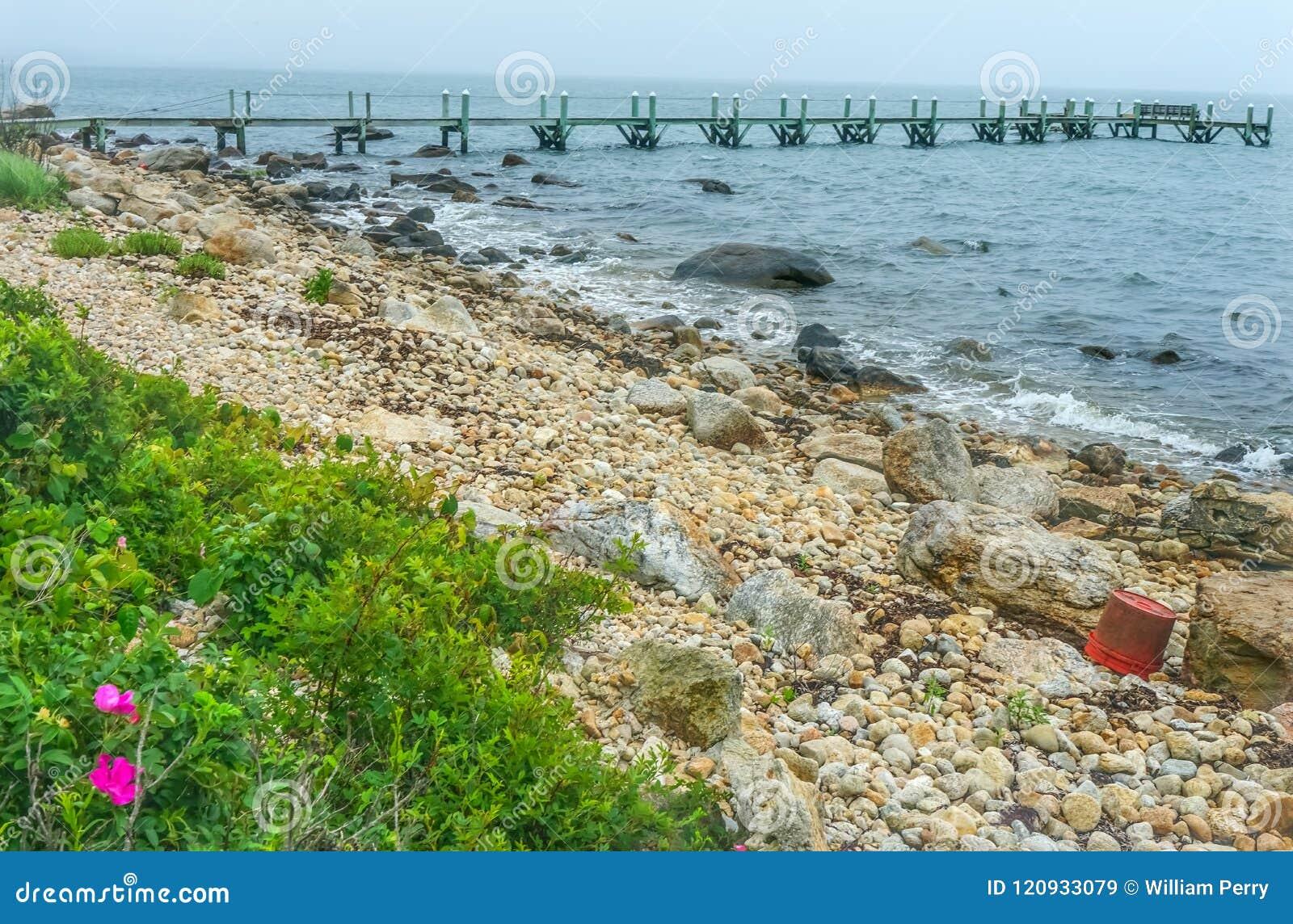 Spiaggia pietrosa Pier Piink Roses Padnaram Dartmouth mA di mattina nebbiosa