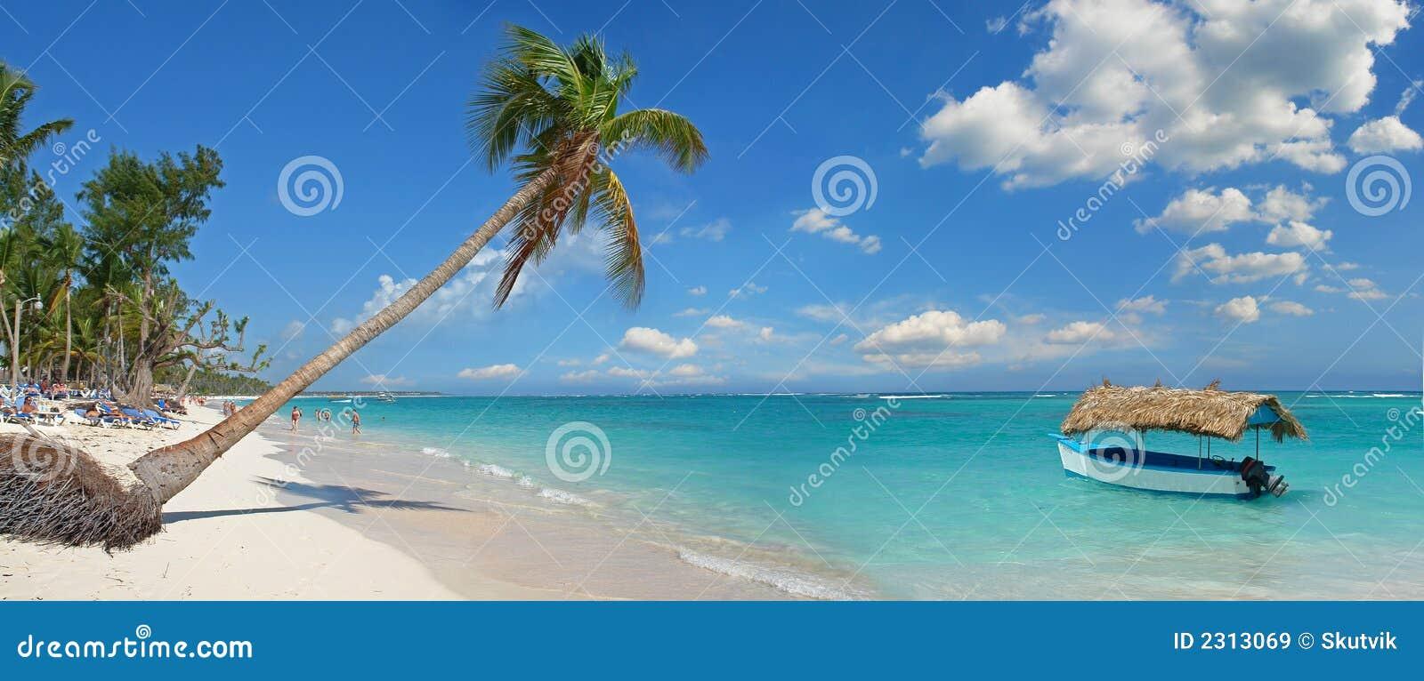 Spiaggia tropicale immagine stock immagine di sole for Disegni di casa sulla spiaggia tropicale
