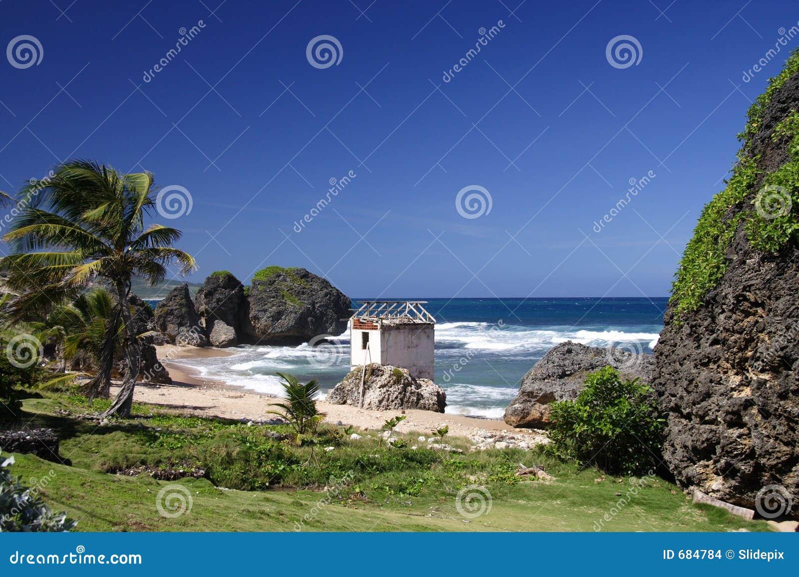 Spiaggia tropicale fotografia stock immagine di coral for Disegni di casa sulla spiaggia tropicale