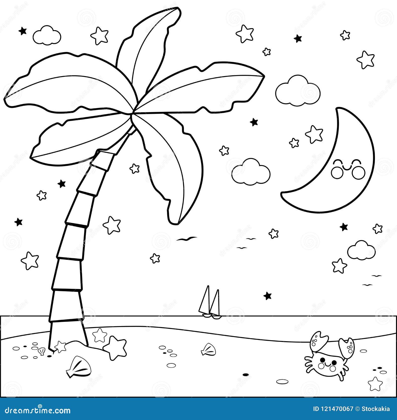 Cielo Stellato Da Colorare Per Bambini.Spiaggia Tropicale Con La Palma Alla Notte Pagina In Bianco E Nero