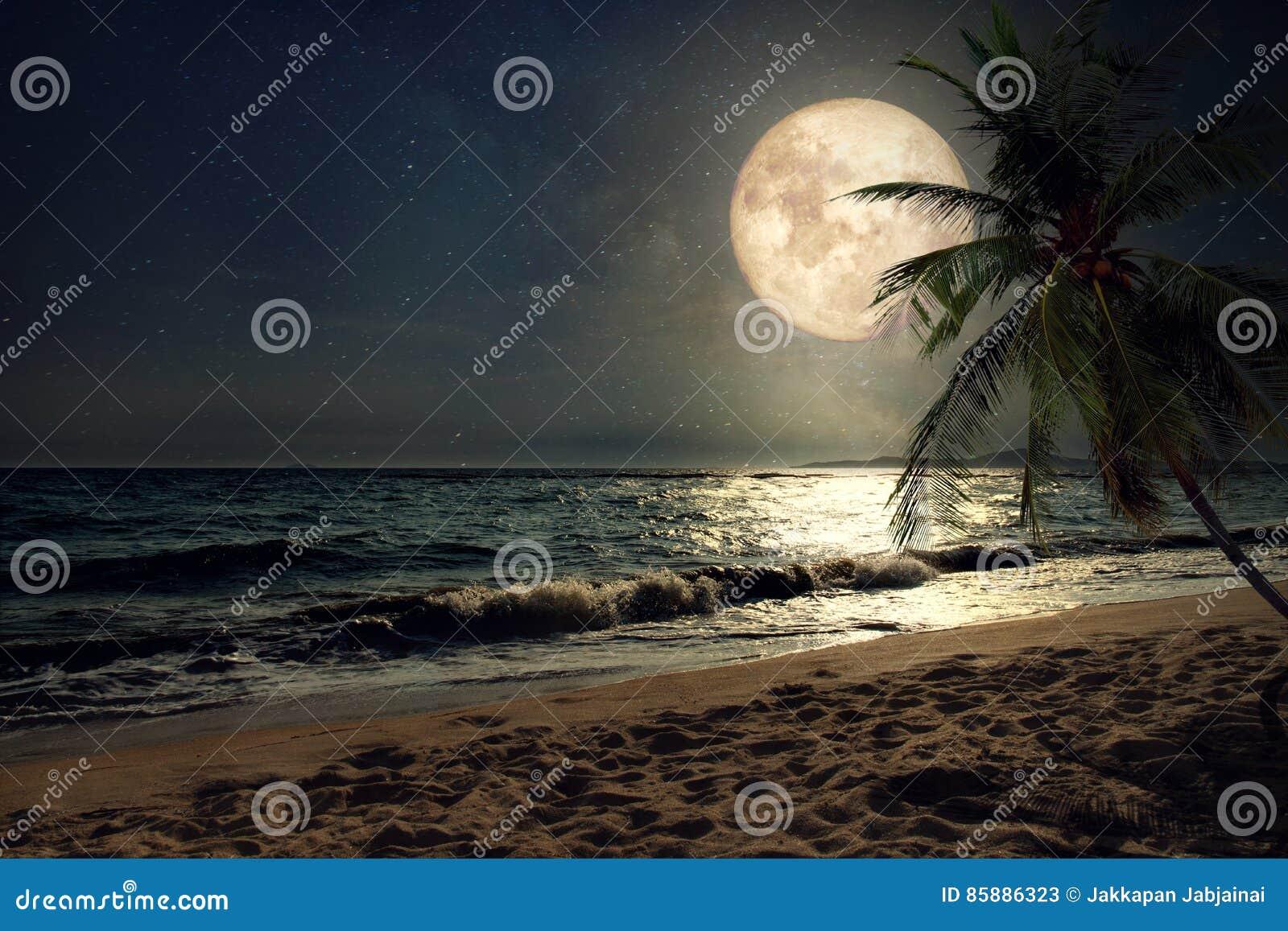 Spiaggia tropicale di bella fantasia con la stella in cieli notturni, luna piena della Via Lattea