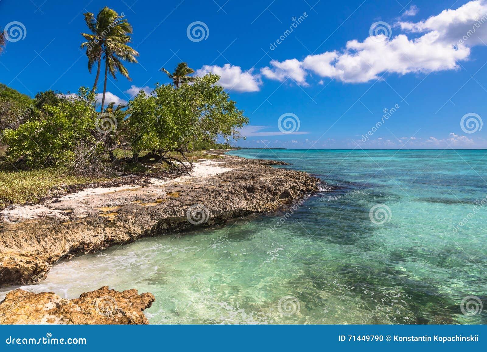 Spiaggia tropicale di corallo selvaggia, isola di Saona, mar dei Caraibi