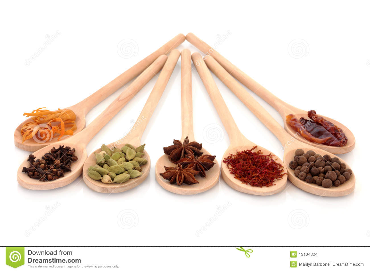 Spice Selection stock photo  Image of spice, herb, cooking