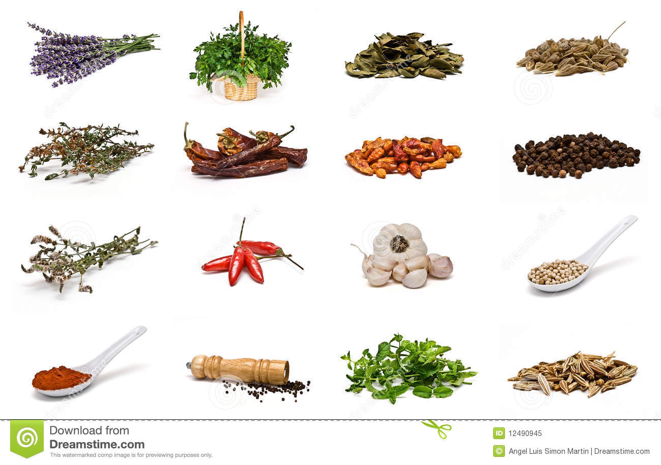 Spices collection.