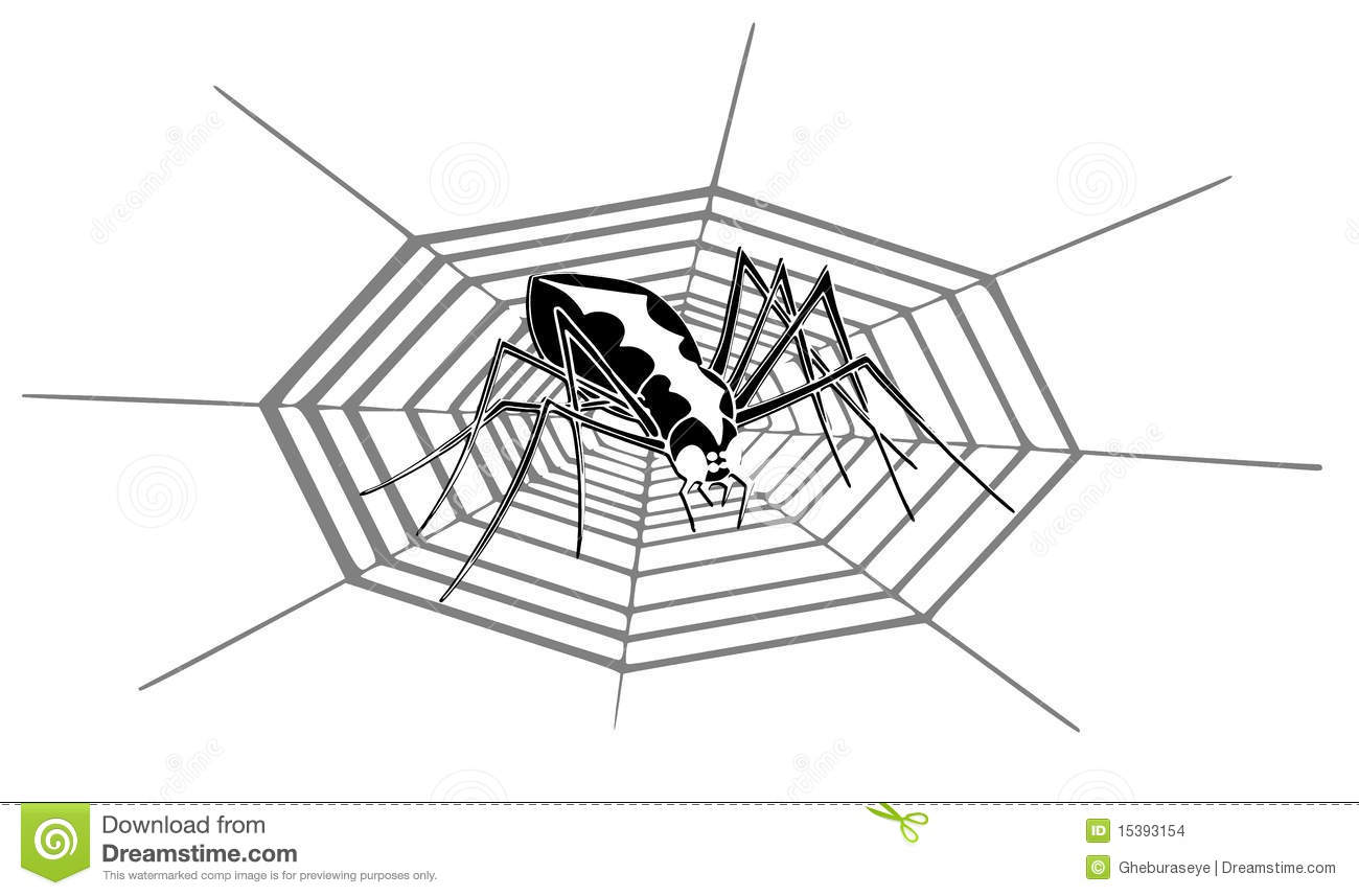 vector illustration of a spider on a cobweb black auto electricalisolated spider in cobweb stock images