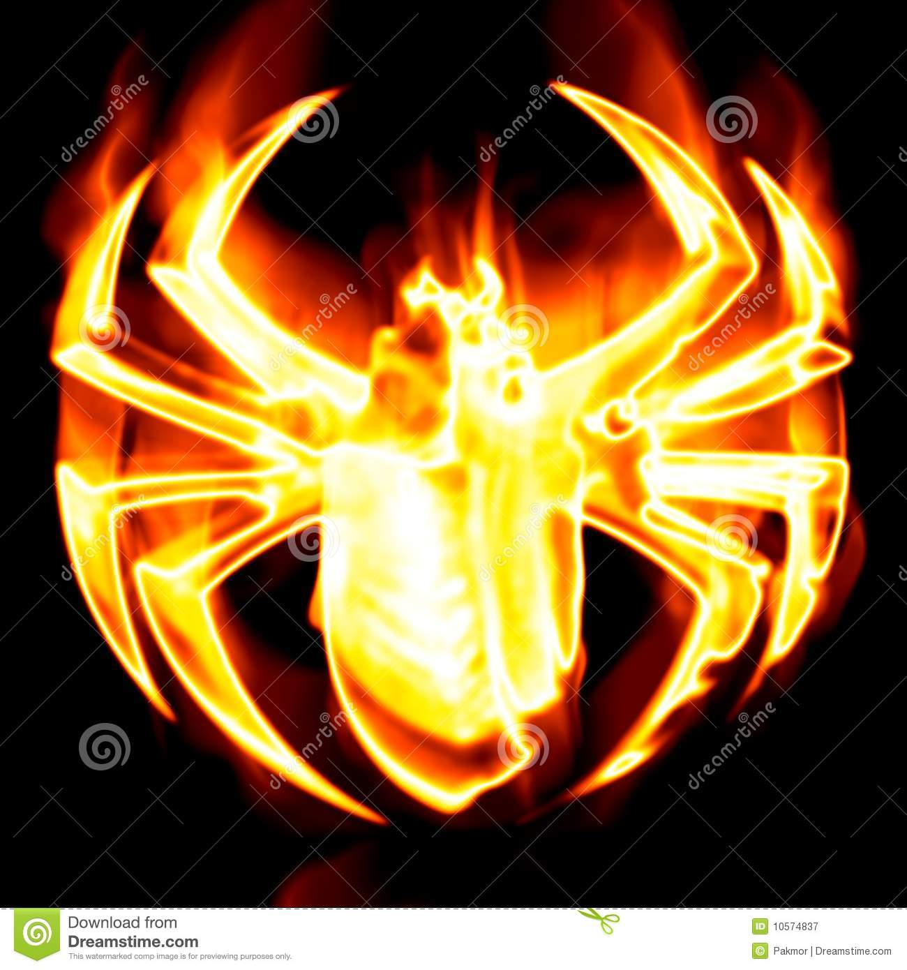 Toriko Surrounded By Bugs Jpg: Spider Surrounded By Fire Royalty Free Stock Photography