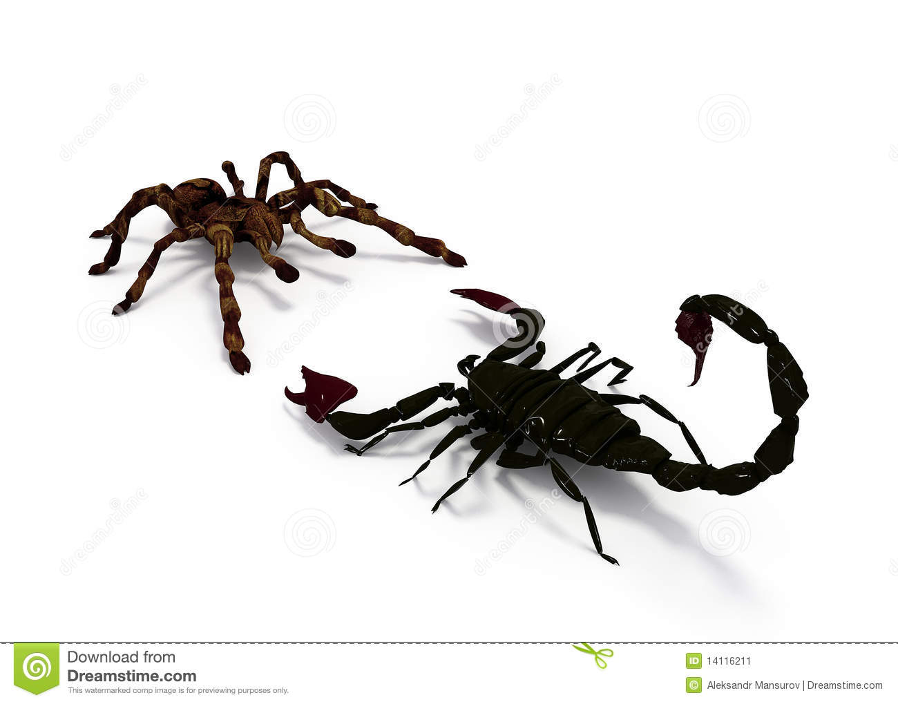 Spider vs scorpion stock illustration. Illustration of illustration ...